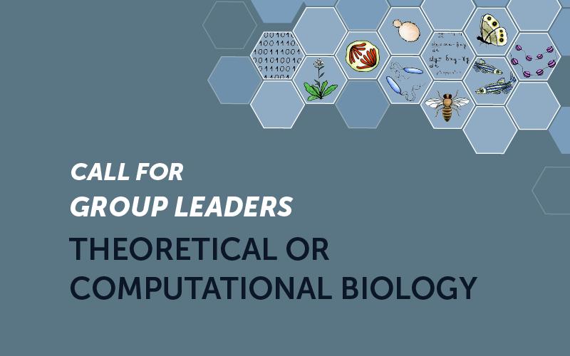 Líder de Grupo em Biologia Teórica ou Computacional