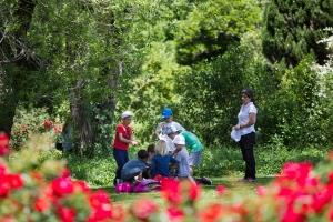 Descobrir o Jardim Gulbenkian