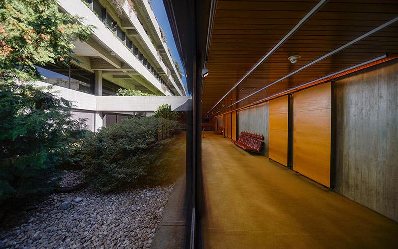Arquitetura e natureza em diálogo