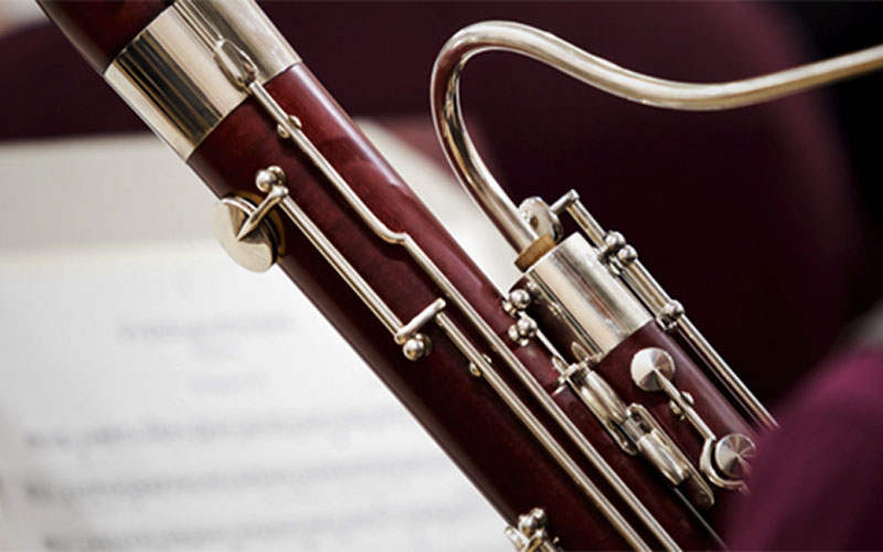 Auditions for Bassoon/Double Bassoon