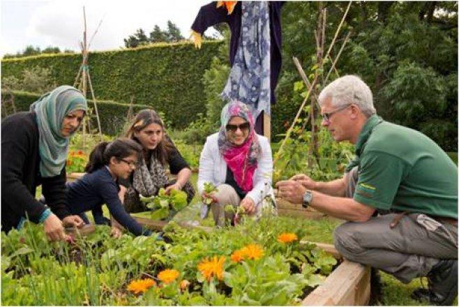 A botanic gardener engaging with public