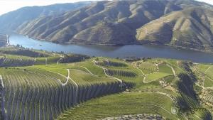 Prémio Gulbenkian Sustentabilidade - Associação para o Desenvolvimento da Viticultura Duriense